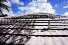 Maui Roof Cleaning