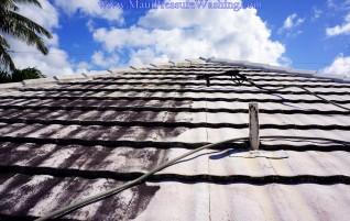 Maui Roof Power Washing