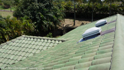 Clean Roof Maui